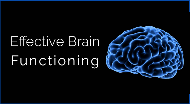 moringa-for-brain